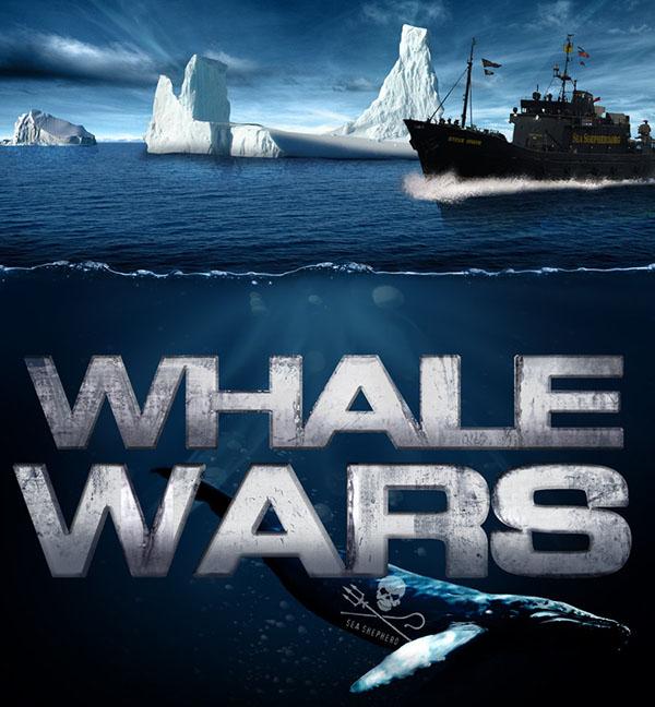 Whale_Wars_Sea_Shepherd_by_sharkstudio