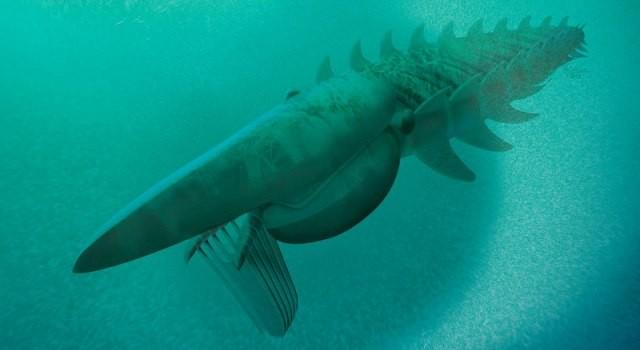 Otkriveno morsko čudovište staro 480 miliona godina